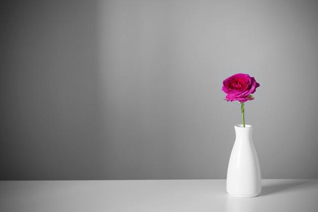 회색 배경에 흰색 꽃병에 보라색 장미