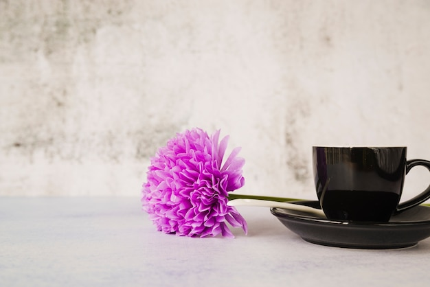 Purple single flower on the saucer with cup against grunge wall
