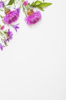 白い表面に紫色の夏の花