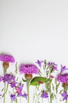 Purple summer flowers on white surface
