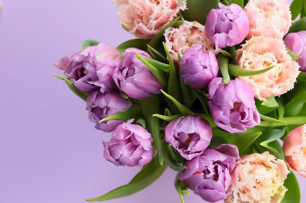 紫のチューリップの花束。紫色の表面にライラックチューリップ