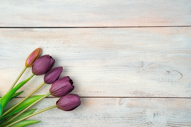 Purple tulips on a light wooden background. top view with space to copy.
