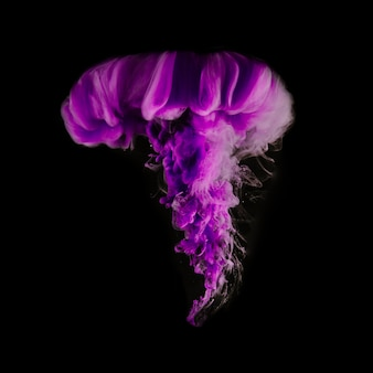 Purple vivid cloud of ink on black