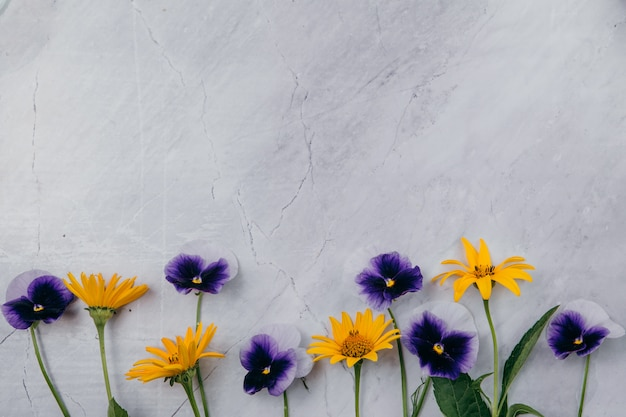 Purple and yellow flowers on a marble background