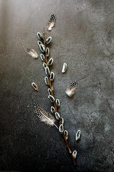 ネコヤナギの花の枝、流行のグランジの羽は暗い黒い石の頁岩を引っかいた