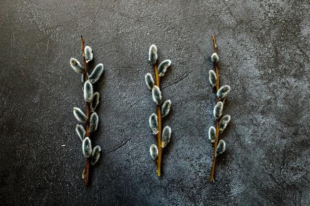 トレンディなグランジのネコヤナギの花の枝は、暗い黒い石の頁岩を傷つけました