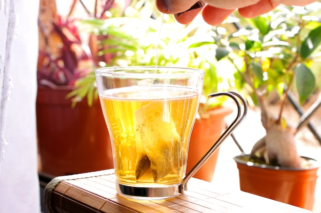 Putting red tea bag into mug with hot water on window with plants