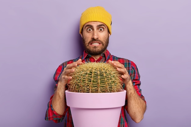 Puzzled man with stubble tries to touch prickly cactus with hands, clenches teeth and looks with surprisement at camera, dressed in stylish hat and shirt. guy poses near potted plant indoor.
