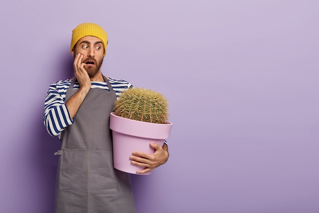 Puzzled stupefied male florist holds big pot of decorative spiny green cactus