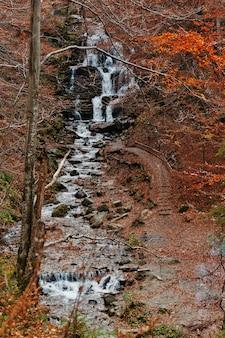 山の村pylypetsスキーリゾートの下の滝ボルジャヴァ。縦写真