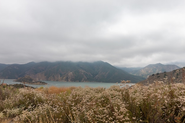 Pyramid lake in california captured on a cloudy day
