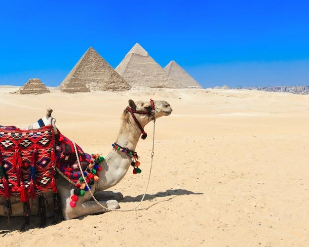 Пирамиды с красивым небом гизы в каире, египте.