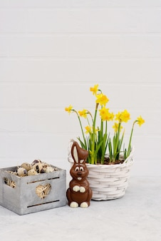 Quail bird egg in a wooden basket with fresh daffodil flowers and a chocolate easter bunny.