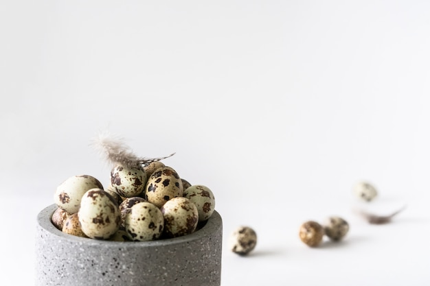 Quail easter eggs and feathers in ceramic bowl on white background.