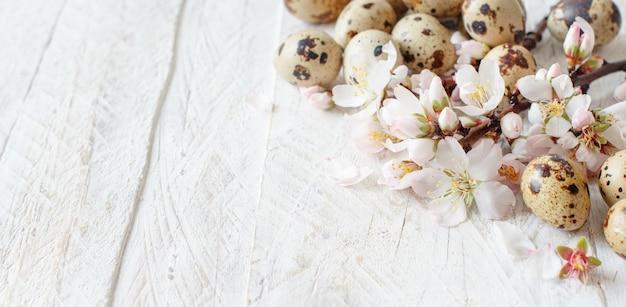 ウズラの卵と木製の背景にアーモンドの花