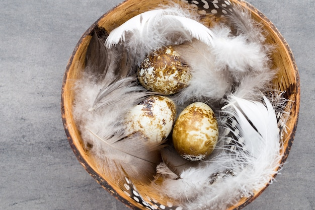 Quail eggs in the bowl with feathers
