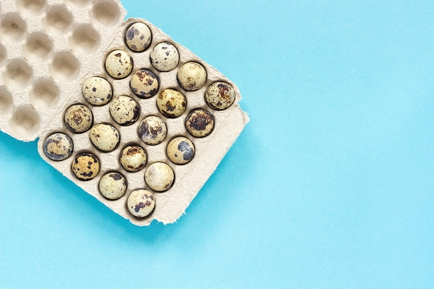 Quail eggs in cardboard box on blue paper background. template