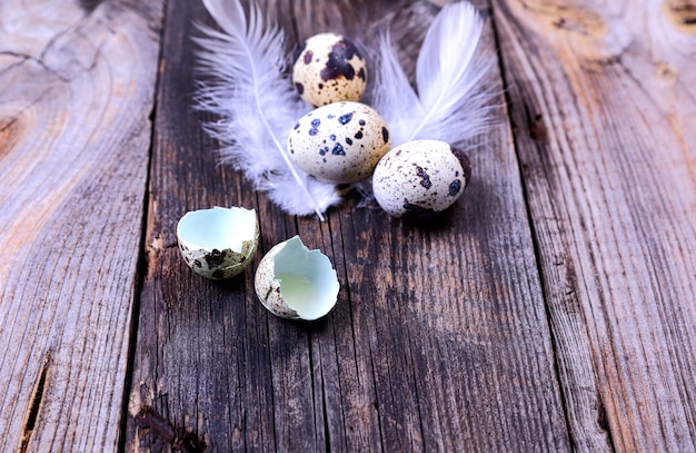 Quail eggs on a gray wooden surface,