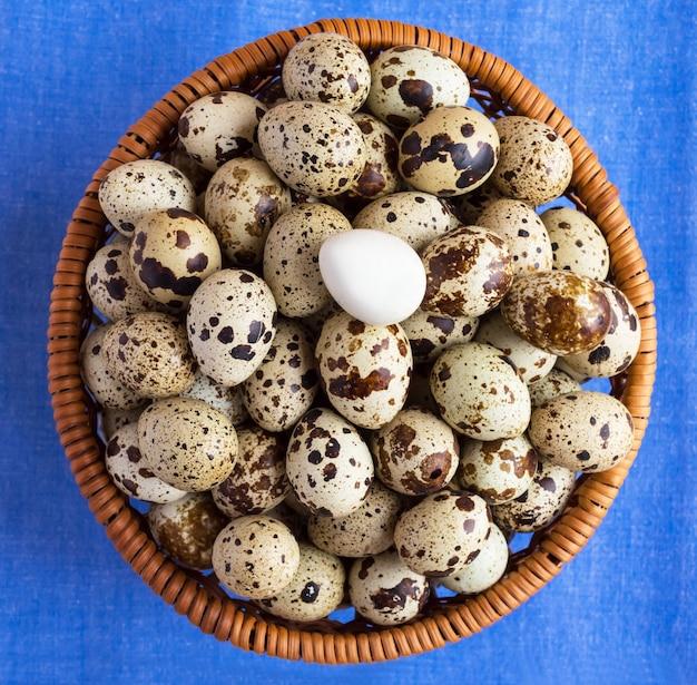 青いナプキンのバスケットにウズラの卵。たくさんの。
