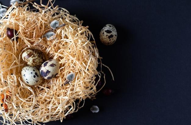 Перепелиные яйца в гнезде на черном фоне