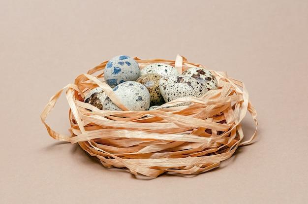 Перепелиные яйца в пластиковой транспортировочной таре. коричневый фон с пространством для текста. пасхальная копия пространства