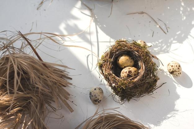 Яйца перепелов в гнезде мелких птиц.