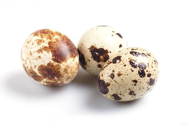 Quail eggs isolated on white  background.