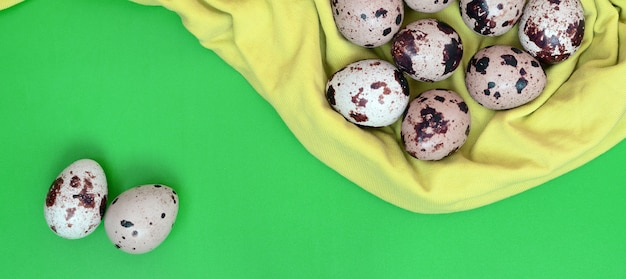 Quail eggs on a light green surface