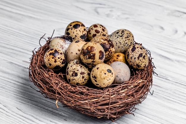 Quail eggs in the nest. protein diet. healthy diet.