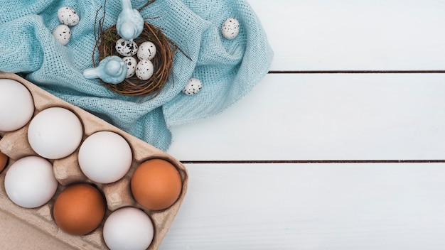 Quail eggs in nest with rack