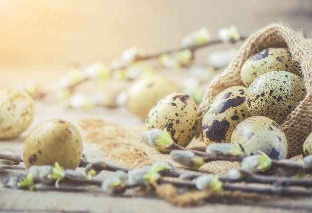 Перепелиные яйца на фоне красивой весны. выборочный фокус.