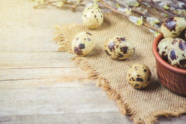 美しい春の背景にウズラの卵。セレクティブフォーカス
