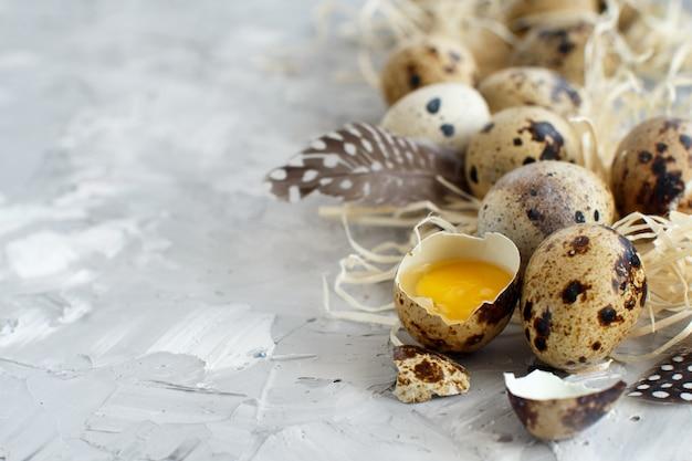 灰色の背景のウズラの卵をクローズアップ Premium写真