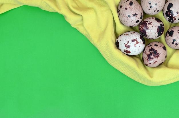 Перепелиные яйца на светло-зеленой поверхности, вид сверху, пустое место для т