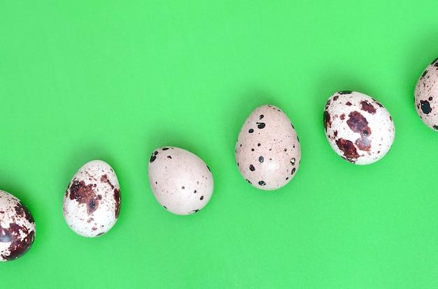 Перепелиные яйца на светло-зеленой поверхности, вид сверху, пустое место для т Premium Фотографии