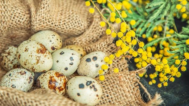 Перепелиные яйца на мешковине с цветами