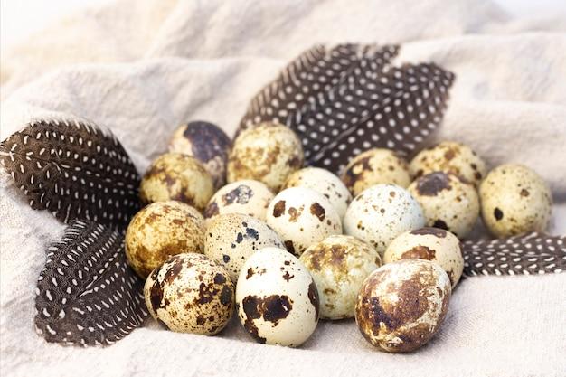 삼 베에 메 추 라 기 계란입니다. 메추라기 깃털