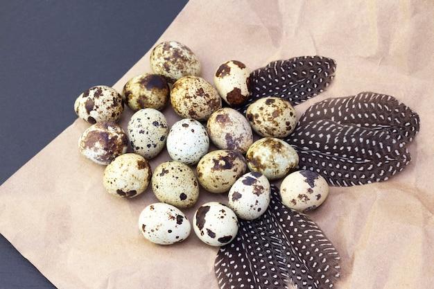 어두운 배경에 공예 종이에 메 추 라 기 계란. 메추라기 깃털