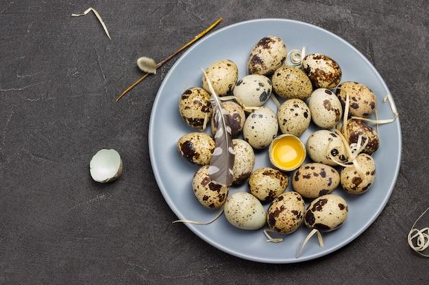 회색 접시에 메추라기 알. 접시에 깨진 된 달걀입니다. 새 깃털. 평평하다. 공간 복사
