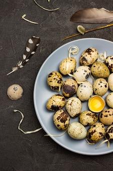 회색 접시에 메추라기 알. 접시에 깨진 된 달걀입니다. 새 깃털. 평평하다.