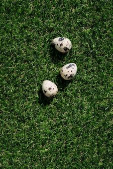 緑の草の上にウズラの卵。ハッピーイースターのコンセプト。スペースをコピーします。上面図