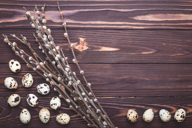 Quail eggs and plants on dark wooden background with copy space. easter concept.