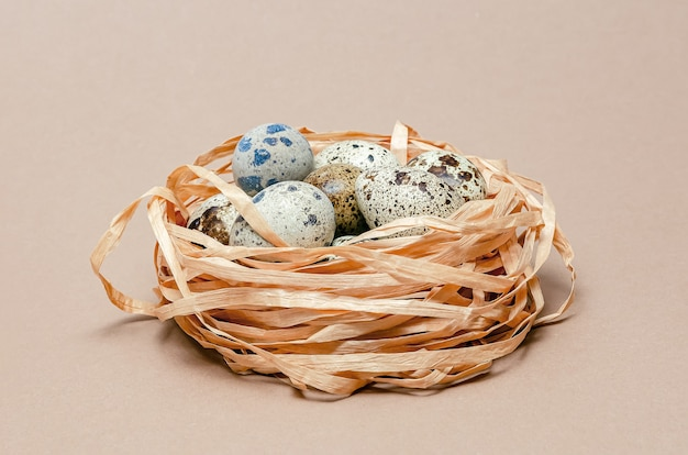 Quail eggs in a plastic shipping container. brown background with space for text. easter copy space