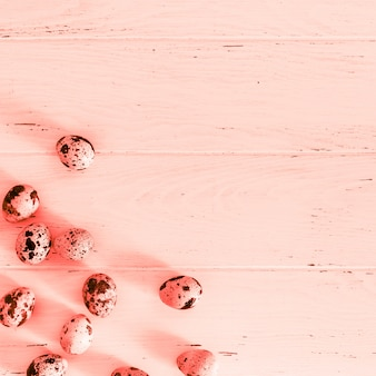 Quail eggs on wooden minimal coral surface