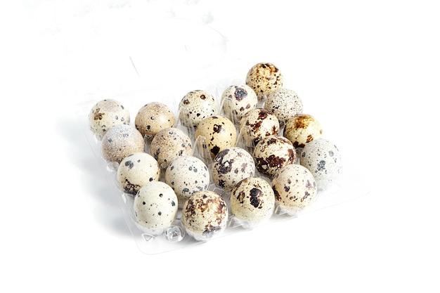 메추라기 흰색 배경에 투명 플라스틱 용기에 계란을 발견