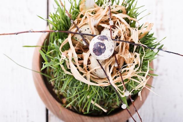 Quails egg on grass in a brown flowerpot