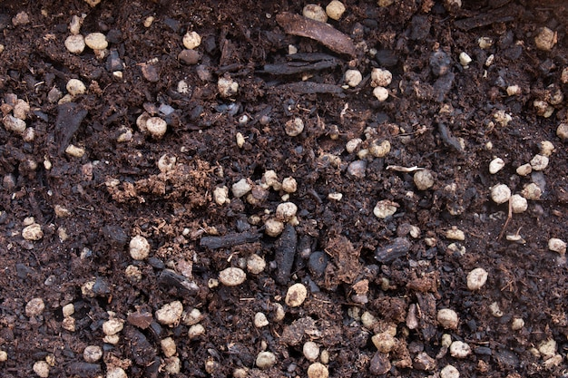 Quality dirt for flowers