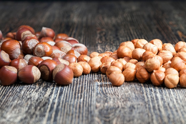 Качественные сырые орехи, фундук, готовые к употреблению