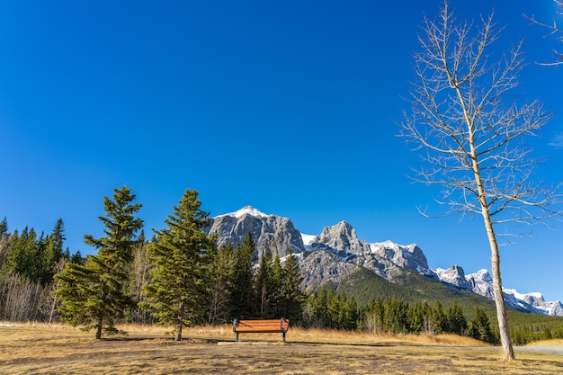 Quarry lake park. snow capped mount rundle mountains in the background.