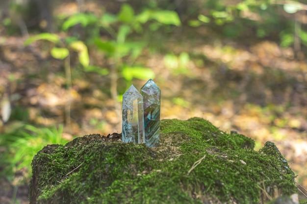 苔むした木の切り株にクォーツクリスタル